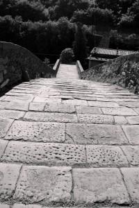 ponte 3